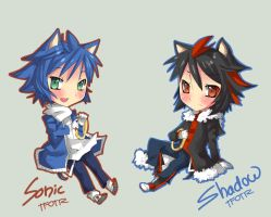 Sonic and Shadow by TFOTR