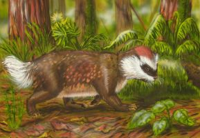New Zealand pseudobadger by AlexSone