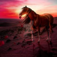 HEE || Horse Avatar | Goodbye Feelina by skystream11