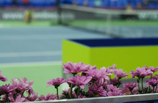tennis flowers by Silhouette-sun