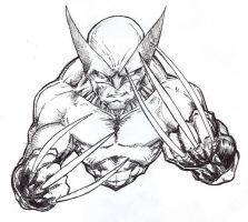 Wolverine by seraphimon83