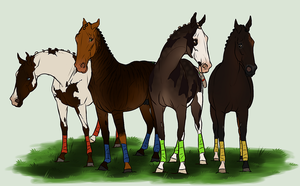 Polo ponies by CasThePizzaMan