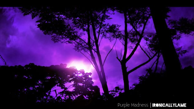 Purple Madness by theROJMEISTER