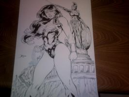 Preview WW by Barquiel