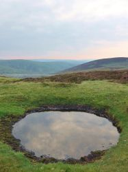 The Bog by RoseSparrow