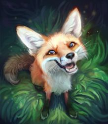 Juniper The Fox by TehChan