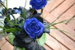 Blue rose :stock: by NathL-fr