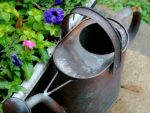 Watering Can by justinpooh