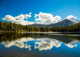 Out of the Clear Blue Sky - Bear Lake - RMNP by JeffreyDobbs