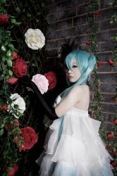 vocaloid - vintage rose by maria-neige