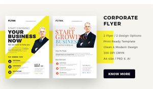 corporate flyer by webduckdesign