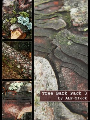 Tree Bark Pack 3 by ALP-Stock