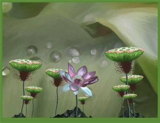 -Water Lily- by ssst