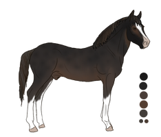 WBS Finess's Clover Andor by angry-horse-for-life