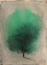 Green Tree in Evening Light by SethFitts