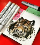 Tiger Sketchbook by Ahkward