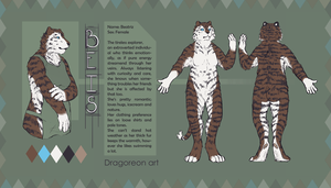 Reference sheet Beis by Dragoreon