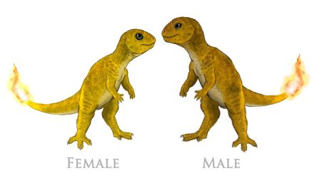 Charmander male and female by JoshuaDunlop
