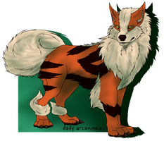Daily Arcanines by AbsoluteDisaster