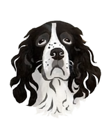 Portrait of a Springer Spaniel by Ketutar