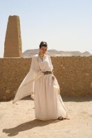 Classical Grecian 13 by chirinstock