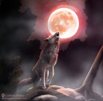 Red Wolf Moon by BaiLang