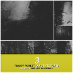 3 Foggy Forest Textures - TLR by TheLostResources