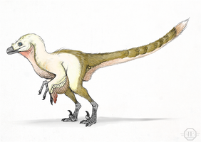 Velociraptor by Andrew-Graphics