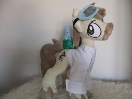 MLP PLUSH-MY LITTLE PONY by Masha05