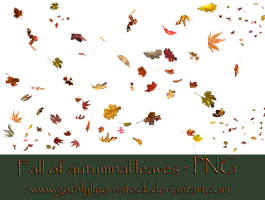 Autumnal Leaves-by-GothLyllyOn-Stock by GothLyllyOn-Sotck