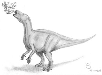 Iguanodon sp. 2 by DiNoDrAwEr