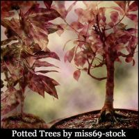 Potted Tree Brushes by miss69-stock