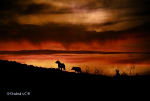 hell's guard by struky