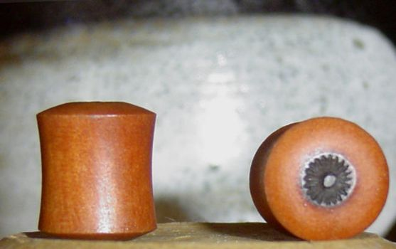 00g Branded Wood Plugs by Indignant1
