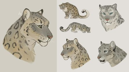 Snow leopards by Azeare