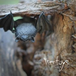 The bat [stuffed toy] by Irentoys