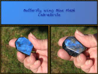 Butterfly Wing Blue Flash by skiesofchaos