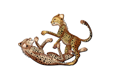 Int Cheetah Day 2017 by catz537