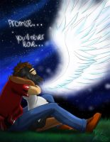 Promise... by KitsuGuardian