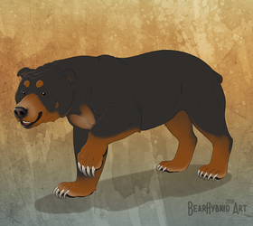 Sun Dogbear by Bear-hybrid
