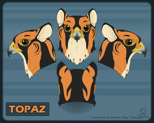 Topaz Realistic Head Reference by CanineHybrid