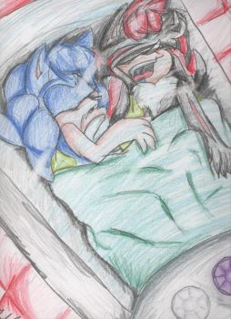 shadow and sonic sleeping by ParumeWorld