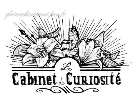 Le cabinet de curiosite by GreatShinigami