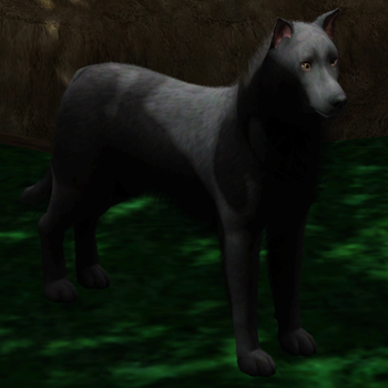 Sims 3 Black Wolf by Hollena