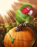 Mikey's Pumpkin Patch by Brushfeather