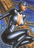CATWOMAN 1 PERSONAL SKETCH CARD by AHochrein2010