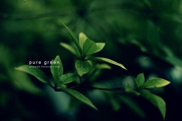 Pure green by pincel3d