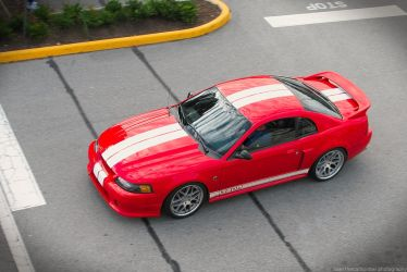 Roush 380R by SeanTheCarSpotter