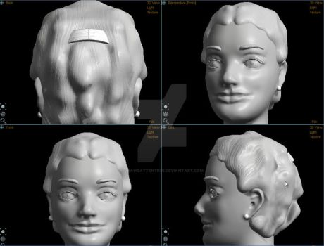 Face in 3D by drawsattention