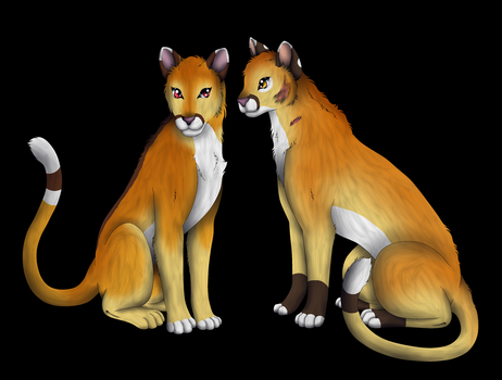 Cougars by AngeI-Spirit